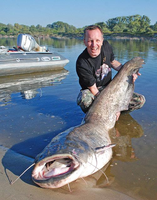 Fishing with guide - Vistula River - Catfish - www.guidedfishing.eu - Fishing Trips