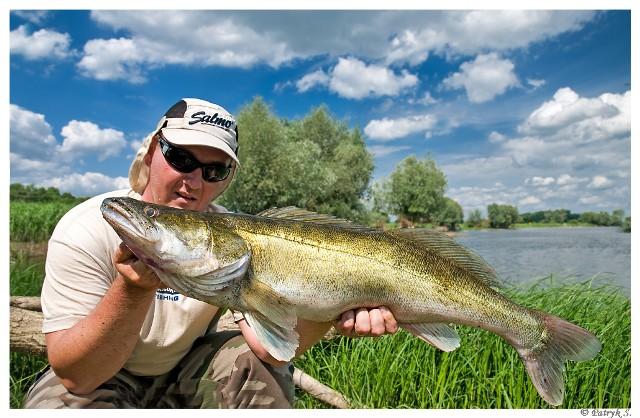 Fishing with guide - Pikeperch - www.guidedfishing.eu - Fishing trips