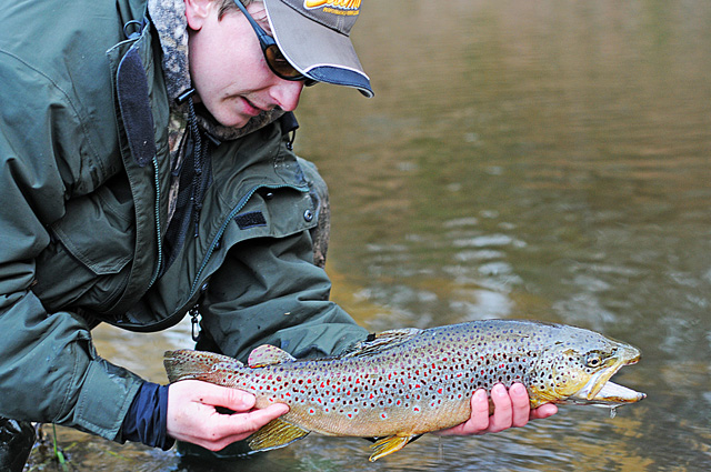 Fishing with guide - Brown Trout - www.guidedfishing.eu - Fishing trips