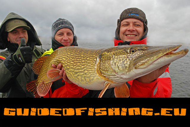 pike-wwwguidedfishingeu-7